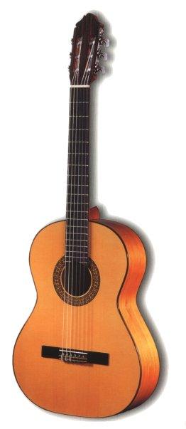 hvor mange strenge har en spansk guitar